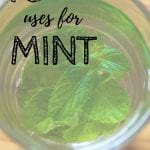 10 Uses For Mint