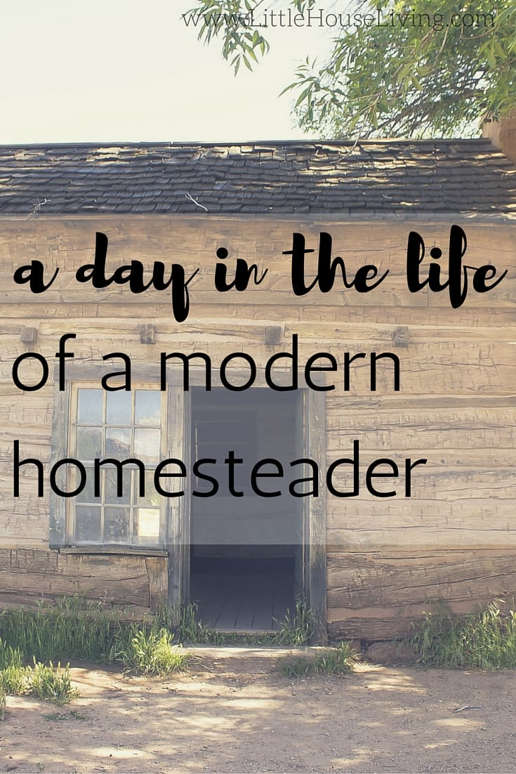 A Day In The Life Of A Modern Homesteader