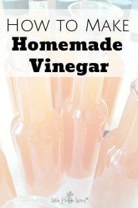How to make Homemade Vinegar